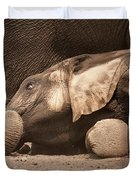 Young Elephant Lying Down Duvet Cover