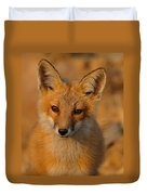 Young Fox Duvet Cover
