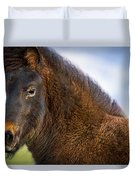 Young Icelandic Horse Duvet Cover