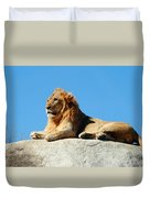 Young Male Lion Reclining On A Rock Duvet Cover