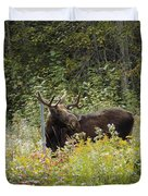 Young Male Moose Duvet Cover