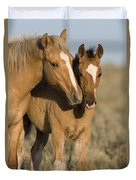 Young Mustangs Playing Duvet Cover