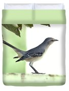 Young Northern Mockingbird Duvet Cover