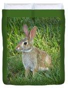 Young Rabbit Duvet Cover