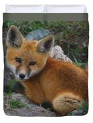 Young Red Fox Duvet Cover