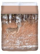 Young White-tailed Deer In The Snow Duvet Cover