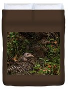 Young Wild Turkeys Duvet Cover