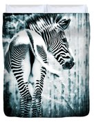 Zebra Blues  Duvet Cover
