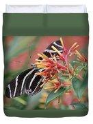 Zebra Butterfly With Blue Eyes Duvet Cover
