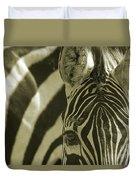 Zebra Close Up A Duvet Cover