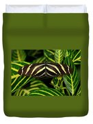 Zebra Longwing Butterfly On A Sanchezia Nobilis Tropical Plant Duvet Cover