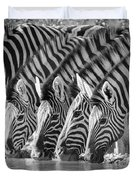 Zebras Drinking Duvet Cover