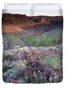 Zeno Canyon Duvet Cover