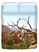 Zion Hike 1 View 4 Duvet Cover