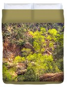 Zion National Park Small Tributary Of The Virgin River Duvet Cover