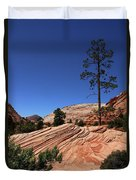 Zion Park Colors And Texture Duvet Cover