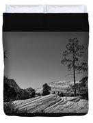 Zion Park Geology Texture Duvet Cover