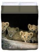Four Cubs Duvet Cover