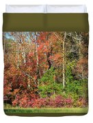 Autumn Colours In Great Smoky Mountains National Park Duvet Cover