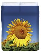Bee On Blooming Sunflower Duvet Cover