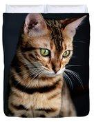 Bengal Cat Portrait Duvet Cover
