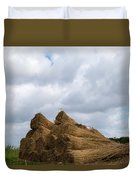 Bound Reeds  Duvet Cover by Anjo Ten Kate