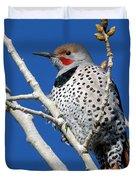 Northern Flicker Woodpecker Duvet Cover