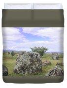 Plain Of Jars Duvet Cover
