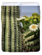 Saguaro Blooms To The Sky  Duvet Cover