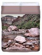 Salt River Canyon Arizona Duvet Cover