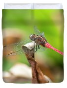 Small Beautiful Dragonfly Duvet Cover