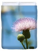 Thistle With Blue Sky Background Duvet Cover