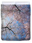 Low Angle View Of Cherry Blossom Trees Duvet Cover
