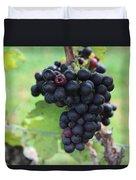 Purple Grape Bunches 17 Duvet Cover