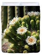 Saguaro Blossoms  Duvet Cover