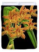 Vintage Orchid Print On Black Paperboard Duvet Cover