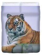 Amur Tiger Duvet Cover