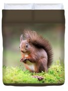 Red Squirrel Sciurus Vulgaris Duvet Cover