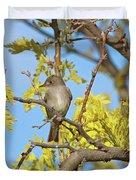 Willow Flycatcher Duvet Cover