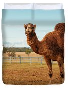 Large Beautiful Camel Duvet Cover