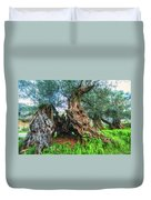 Old Olive Tree Duvet Cover