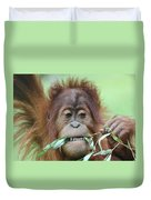 A Close Portrait Of A Young Orangutan Eating Leaves Duvet Cover
