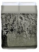 A Single Cherry Tree In Bloom Duvet Cover
