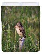 Adult Burrowing Owl Duvet Cover