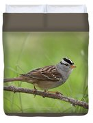 adult White-crowned Sparrow Duvet Cover