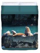 Alaska Steller Sea Lions Duvet Cover