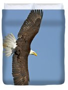 American Bald Eagle In Flight IIi Duvet Cover