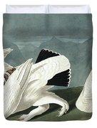 American Ptarmigan, Tetrao Mutus, White Tailed Grous, Tetrao Leucurus Duvet Cover