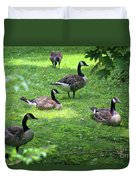 An Afternoon With Canada Geese Duvet Cover