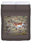Antelope Buck Duvet Cover